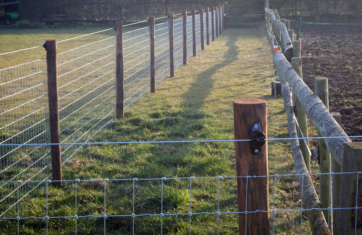Horse Nettingessex Field Fencing
