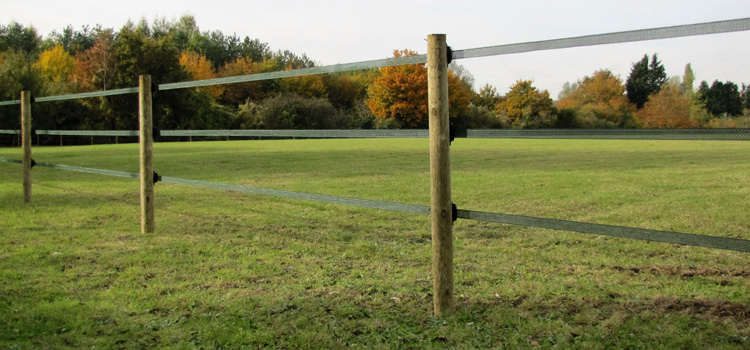 Electric Fencing For Horsesessex Field Fencing