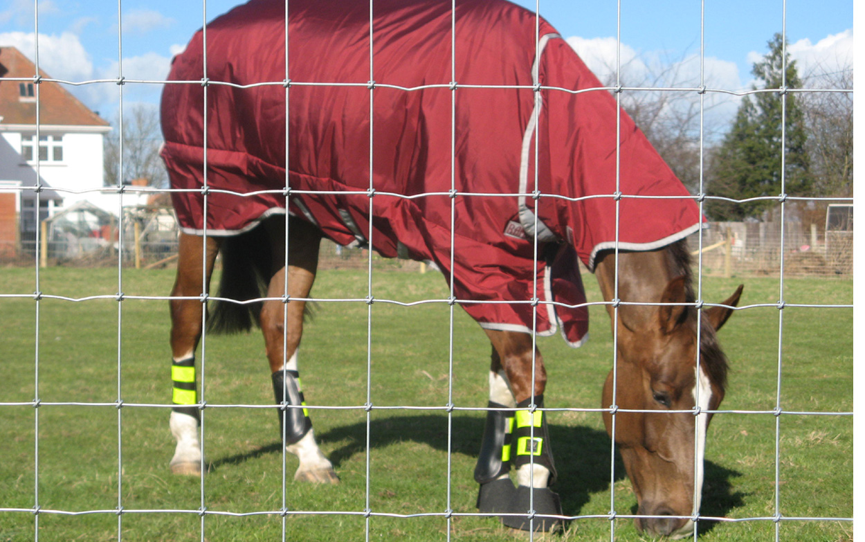 equine-fencing