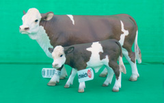 schleich-cows-essex